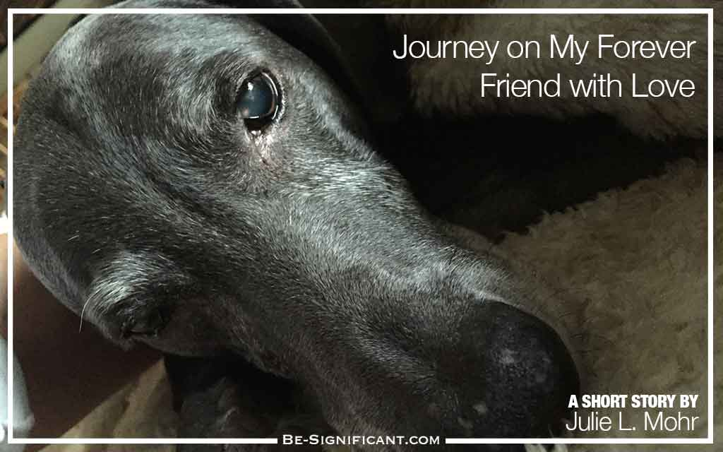 Journey on My Forever Friend with Love